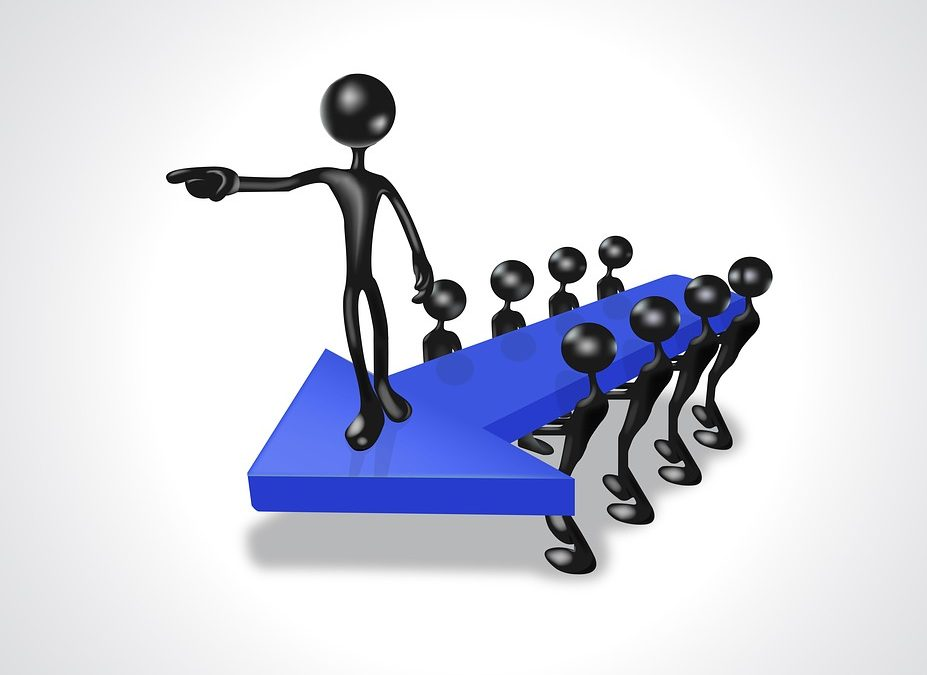 What is a level 5 leader?